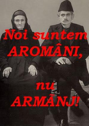 blog armanescu
